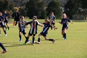 Australind Junior Soccer Club Team - Girl's Carnival 2017-40