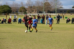 Australind Junior Soccer Club Team - Girl's Carnival 2017-41