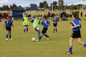 Australind Junior Soccer Club Team - Girl's Carnival 2017-45