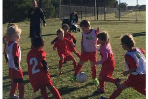 Bunbury United U9 Juniors Team-4