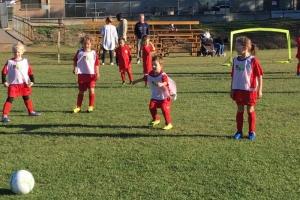 Bunbury United U9 Juniors Team-5