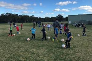 Collie Junior Soccer Club-1