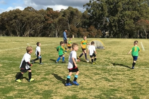 Collie Junior Soccer Club Playing