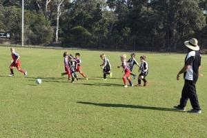 Hay-Park-United-Soccer-Club-10
