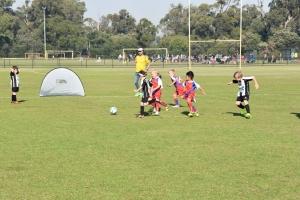 Hay-Park-United-Soccer-Club-11