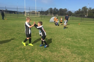 Hay Park United Soccer Club - Boys Team